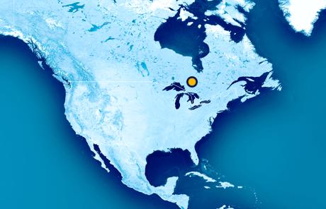 Operations-Location-Porcupine