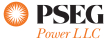 PSEG Wholesale Energy Logo